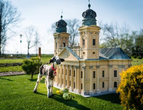 Ezekre a helyekre költözhetsz, ha te is a kicsinyítést választod – A nyolc legjobb Mini-Magyarország